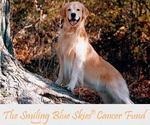 The Smiling Blue Skies Cancer Fund
